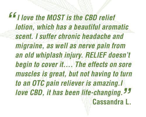 CBD Relief Lotion - Best Seller
